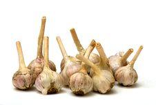 Free Garlic Royalty Free Stock Photo - 6072805