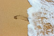 Free Footprint On The Sand Stock Images - 6073824