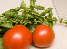 Free Tomatoes And Fresh Basil Royalty Free Stock Photos - 6077848