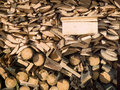 Free Logs Stock Images - 6083784