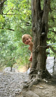 Free Girl Is Hidden Behind A Tree Stock Photo - 6082140