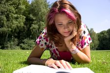 Free Summer Study Royalty Free Stock Photography - 6084457