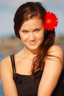 Free Young Girl With Daisy Stock Images - 6085494