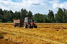 Free Harvest 1 Royalty Free Stock Photos - 6086768