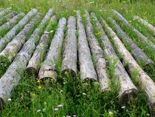 Free Logs In Grass Stock Photo - 6086770
