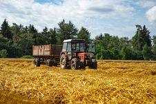 Free Harvest 2 Royalty Free Stock Photo - 6086775