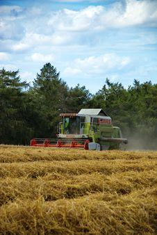 Free Harvest 4 Stock Photo - 6086780
