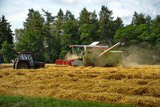 Free Harvest 5 Stock Image - 6086791