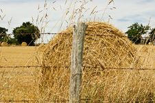 Free Hay Bale In Summer Stock Image - 6088521
