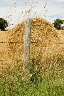 Free Hay Bale In A Summer Field Royalty Free Stock Photography - 6088527