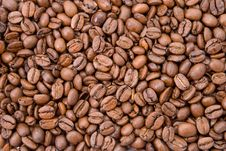 Free Coffee Beans Stock Images - 6088984