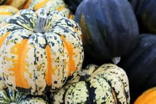 Carnival Squash And Kabocha Squash Royalty Free Stock Photo