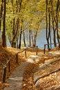 Free Autumn Park Stock Photos - 6093033