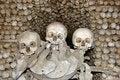 Free Skulls Royalty Free Stock Photos - 6095478