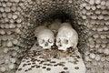 Free Skulls Stock Image - 6095521