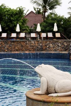 Free Beautiful Swimming Pool Stock Image - 6090041