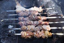 Free Meat Kebabs On Grill Stock Image - 6090511