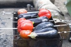 Free Eggplants And Red Bell Peppers On Grill Stock Photos - 6090523