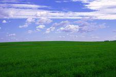 Free Summer Landscape Royalty Free Stock Image - 6091196