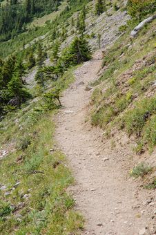 Free Hiking Trail In Rocky Mountains Stock Images - 6091214