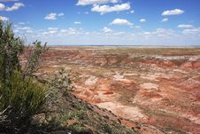 Painting Desert At  Petrified Forest NP Royalty Free Stock Images