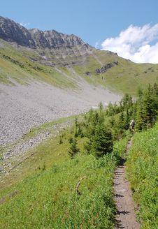 Free Alpine Trail Stock Photo - 6098760