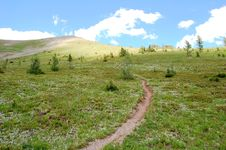 Free Steep Hiking Trail Stock Photography - 6098802