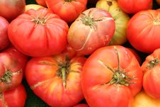 Free Diverse Tomatoes Royalty Free Stock Photo - 6098865