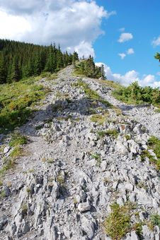 Free Steep Hiking Trail Stock Images - 6098934
