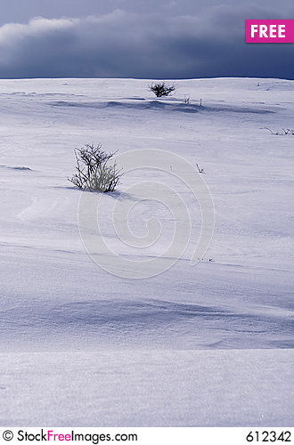 Free Snowy Hill Stock Photography - 612342