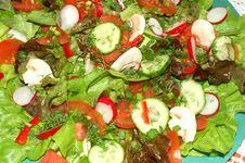 Free Salad 3 Stock Photos - 611033