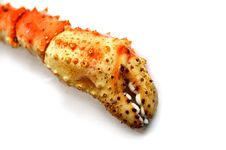 Free Iced Lobster Claw Stock Photo - 611560