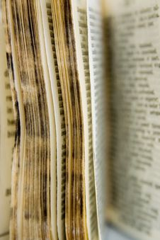Free Old Dictionary Series Stock Photo - 613930