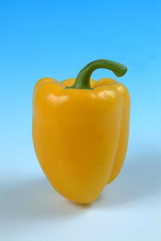 Free Yellow Pepper Stock Photo - 619040
