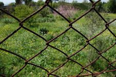 Free A Rusted Net ... Royalty Free Stock Photo - 619805
