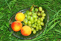 Free Peach And Green Grapes In Grass Stock Photography - 6100062