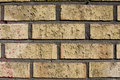 Free Brick Wall Royalty Free Stock Images - 6106499