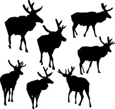 Seven Deer Silhouettes Royalty Free Stock Images