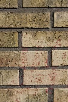 Free Brick Wall Stock Photography - 6106492