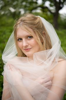 Free Bride With Her Veil Wrapped Around Her Royalty Free Stock Photos - 6107838