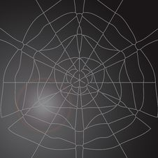 Free Spiderweb Illustration Stock Photo - 6109910