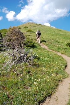 Free Steep Hiking Trail Stock Photography - 6111082