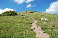Alpine Hiking Trail Stock Photography