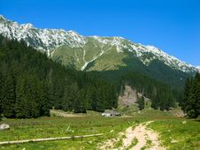 Free Mountain Meadow In Romania Stock Photos - 6111133