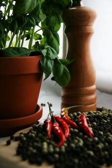 Herbs And Spice Royalty Free Stock Photos