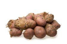 Free Fresh Potato Royalty Free Stock Photos - 6111978