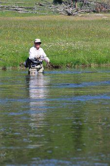 Free Senior Fisherman In Yellowstone Royalty Free Stock Images - 6112039