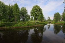 Free Trees Reflecting Royalty Free Stock Images - 6112809