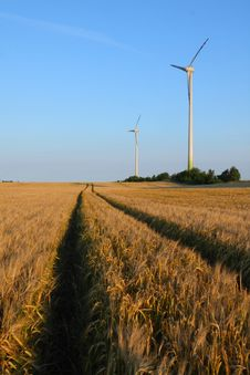 Free Wind Turbines On Wheat Field Royalty Free Stock Photography - 6116357