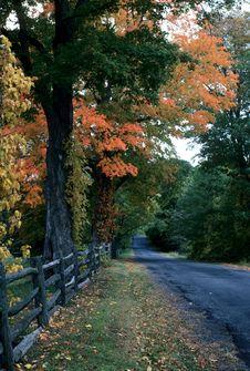 Free Autumn Road Stock Image - 6116541